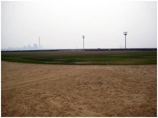 浜公園野球場・多目的グラウンド